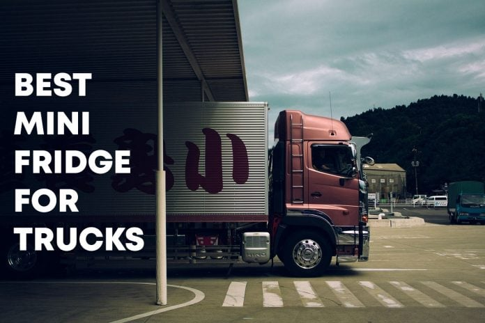 Best Mini Fridge for Trucks